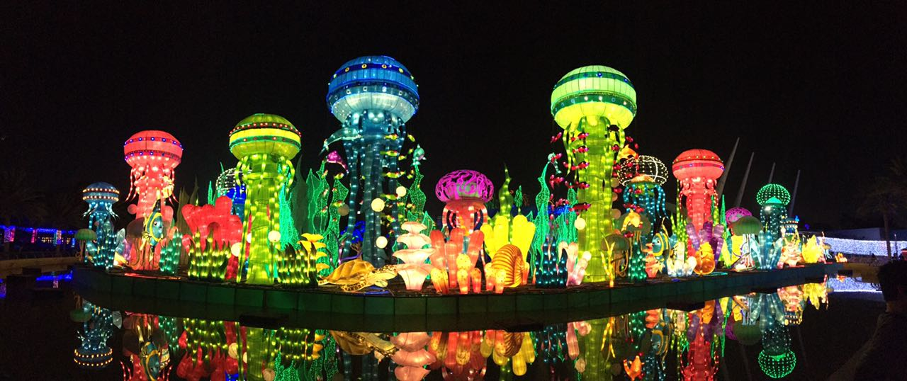 Glow Garden Dubai Archives Smiles And Squeals